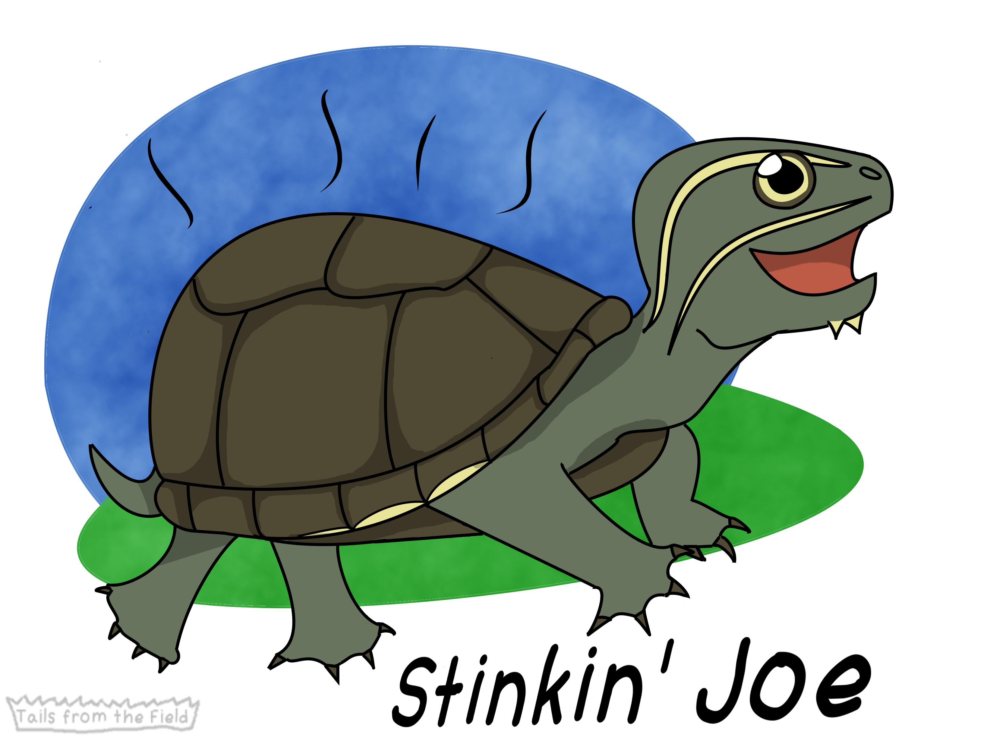 3. Stinkin' Joe