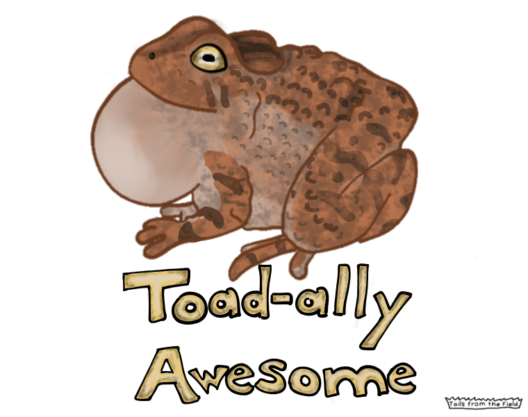 21. Toad-ally Awesome!