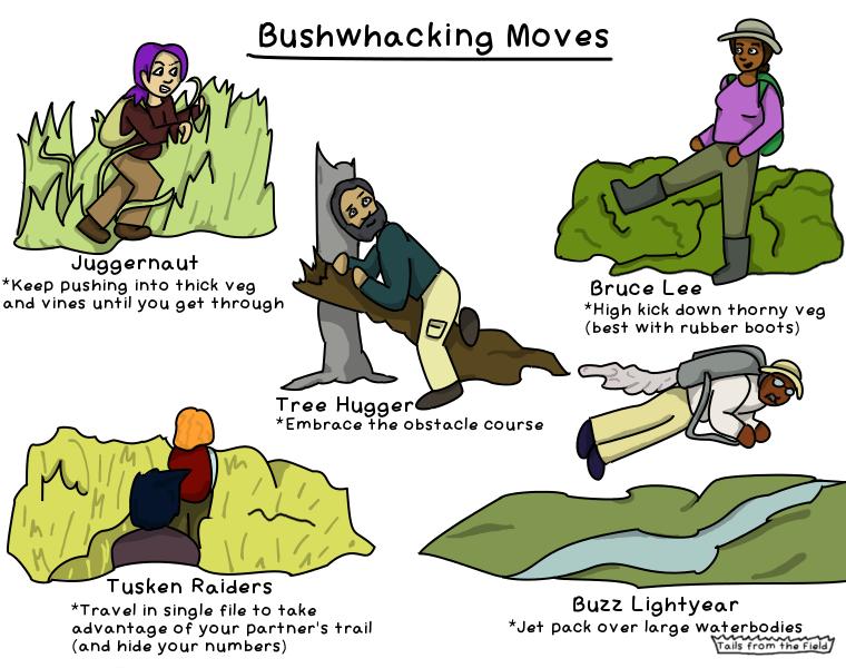 42. Bushwhacking moves