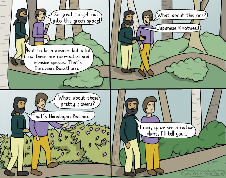 Mac: What about these pretty flowers? Finn: That's Himalayan Balsam. Panel 4: Mac and Finn both look unsettled. Finn: Look, if we see a native plant, I'll tell you…
